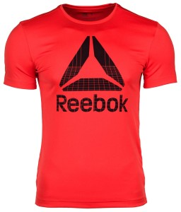 Koszulka męska Reebok Workout Graphic Tech Tee DU2198
