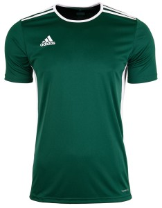 Adidas Koszulka Junior T-shirt Entrada 18 CD8358